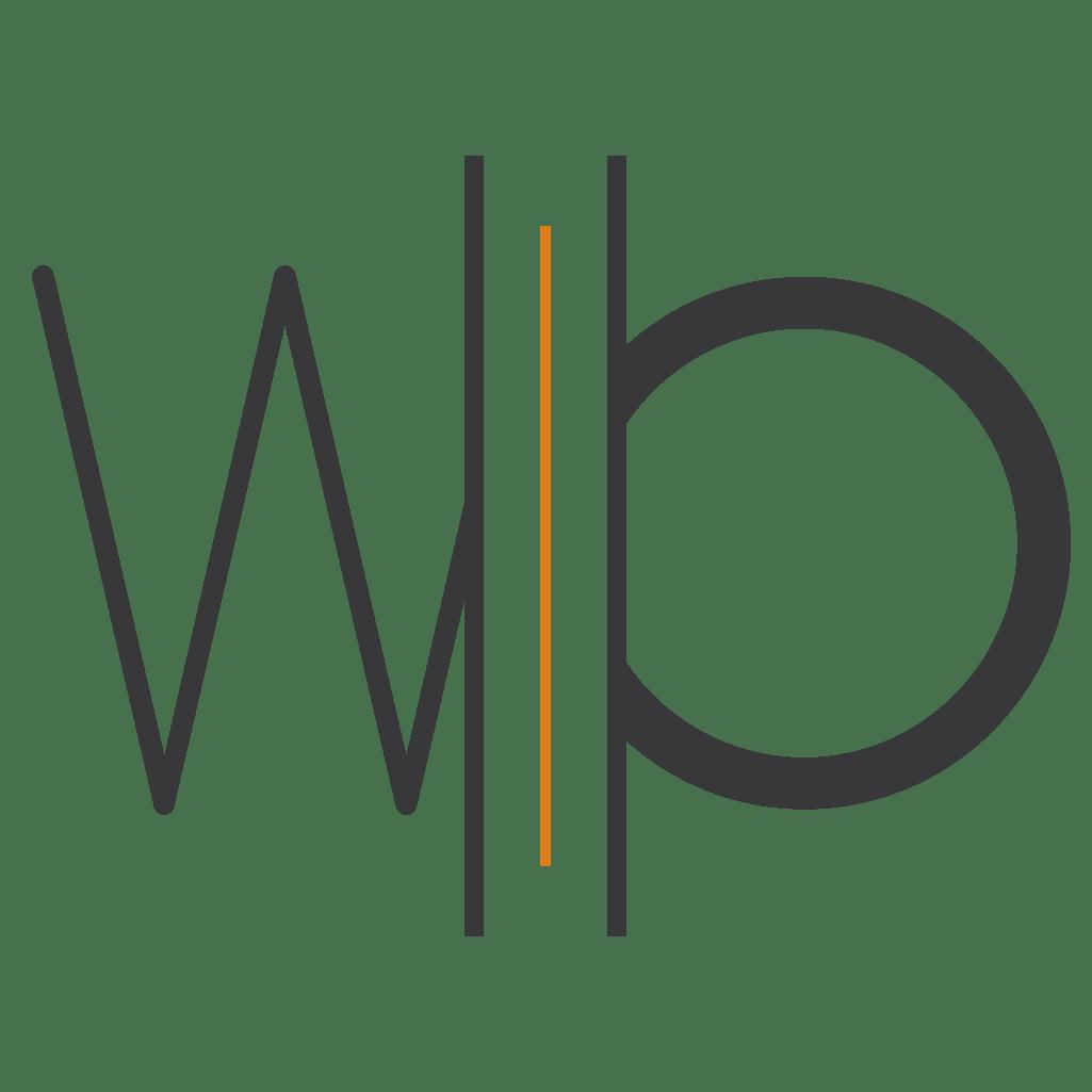 logo_negatief